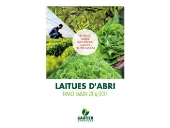 Nouvelle brochure Laitue d'Abri